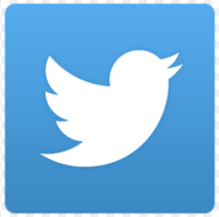Medium twitter