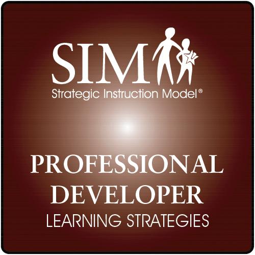 Sim Learning Strategies Professional Developer Strategic