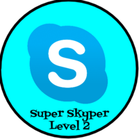 Medium beth brauer   skype level 2