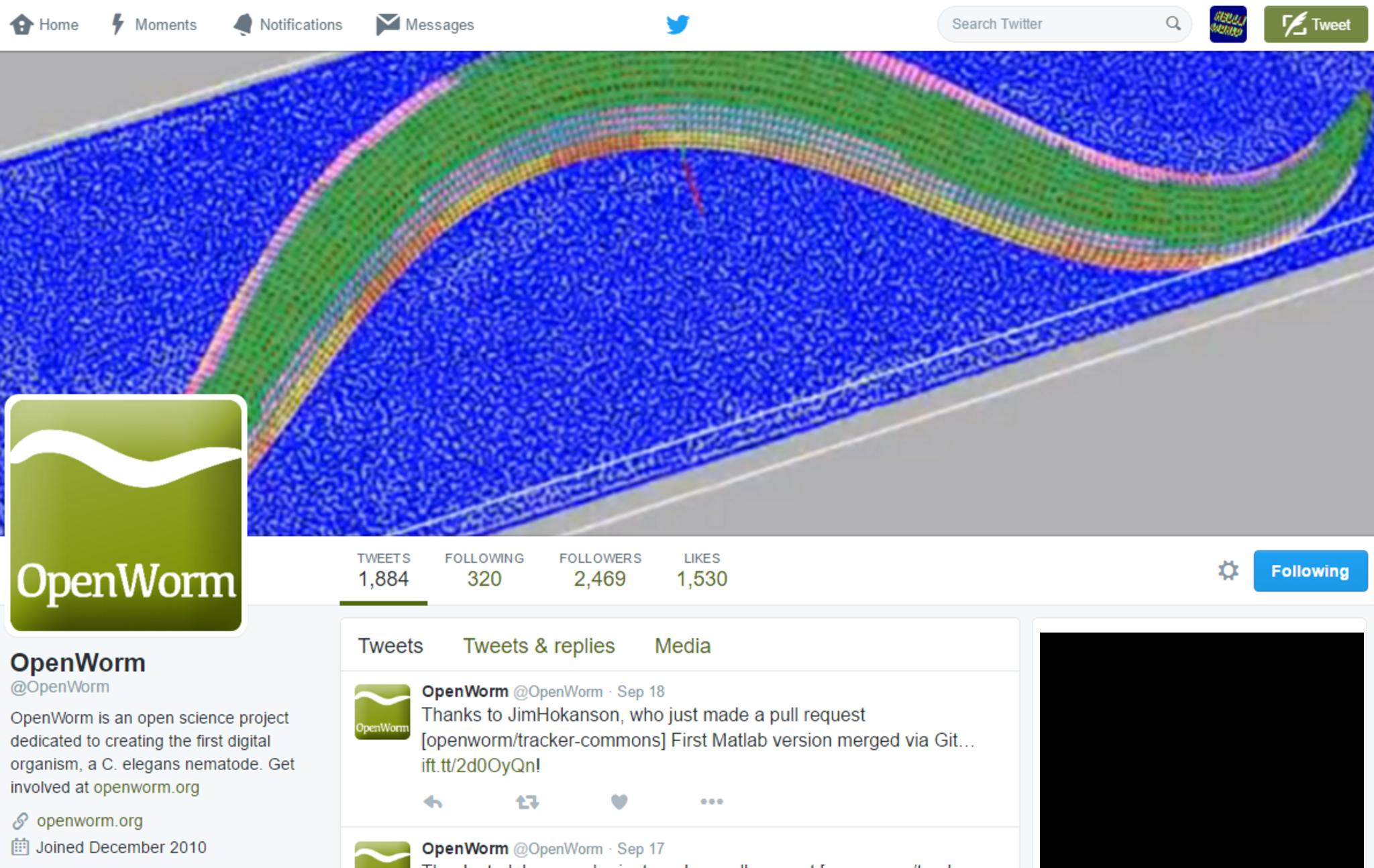 Full twitter openworm