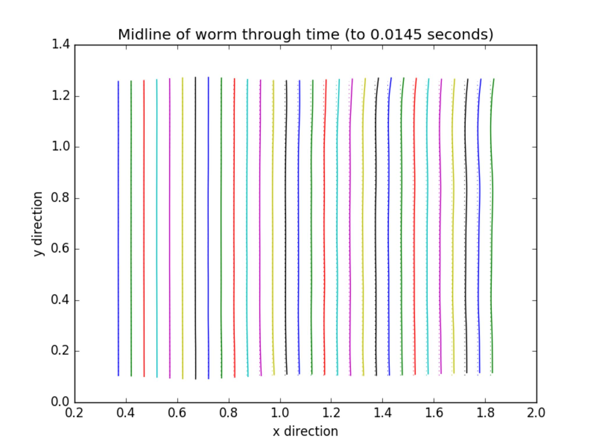 Full worm motion 1