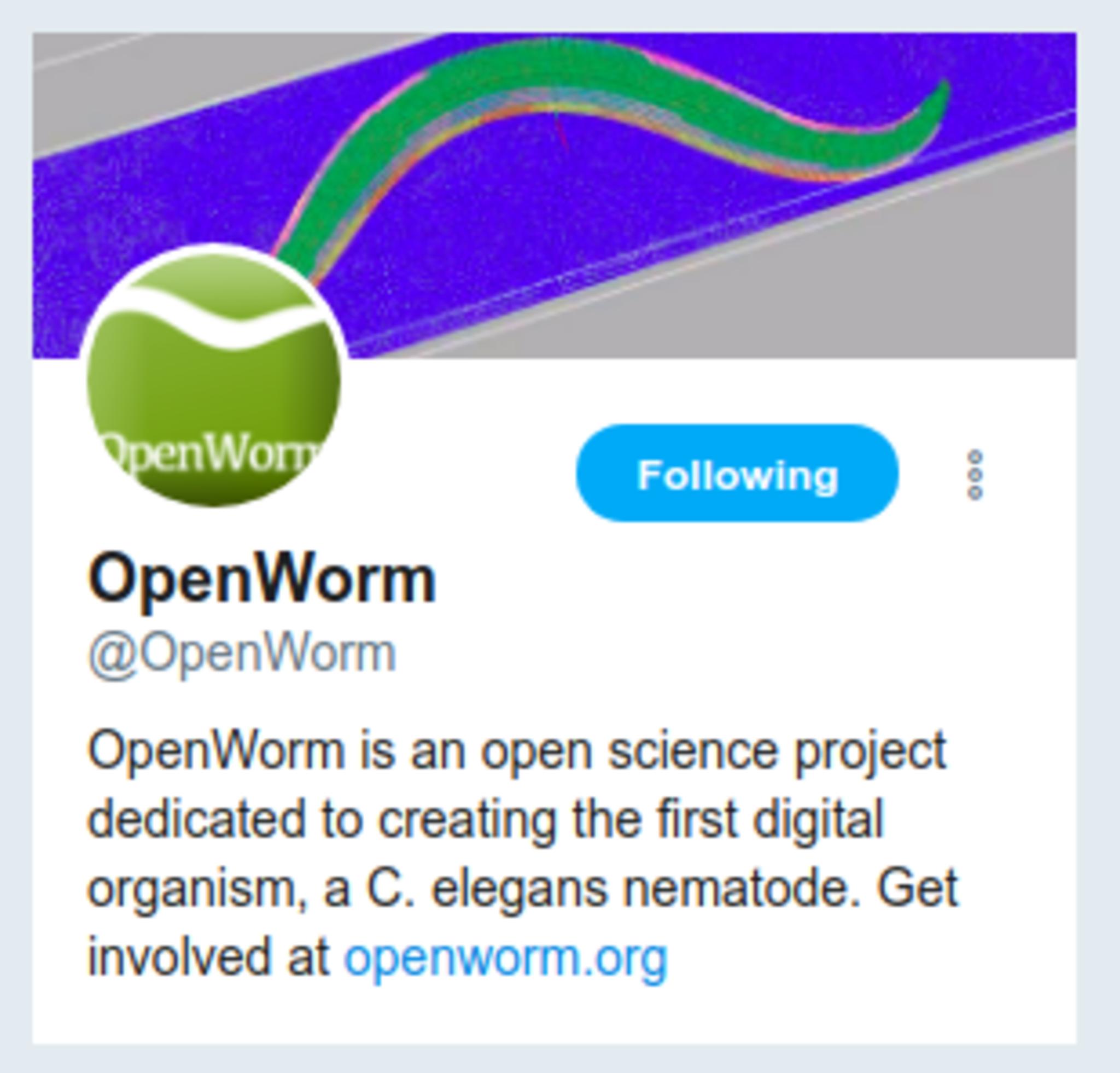 Full openwormtwitter