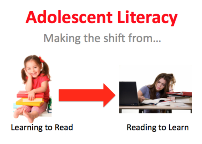Preview adolescent literacy